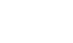 VitaeLab_logo_white_small_png.png